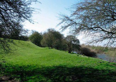 moat-field